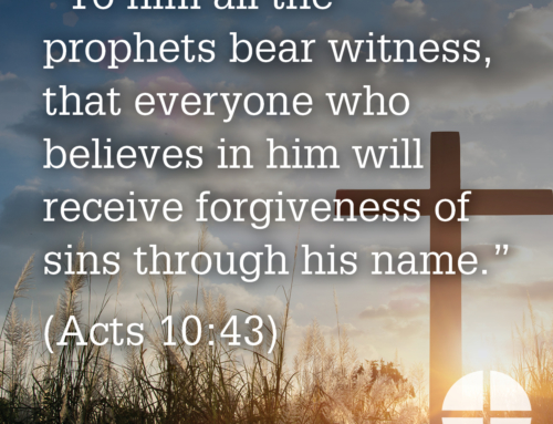 Shareable Image – To Him all the Prophets Bear Witness