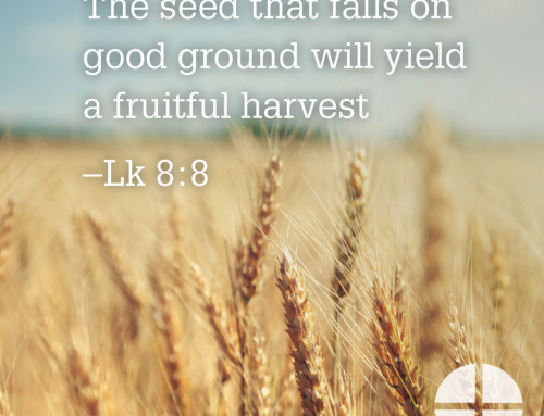 Shareable Image – A Fruitful Harvest