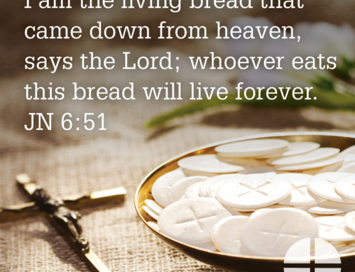 Shareable Image – I am the Living Bread